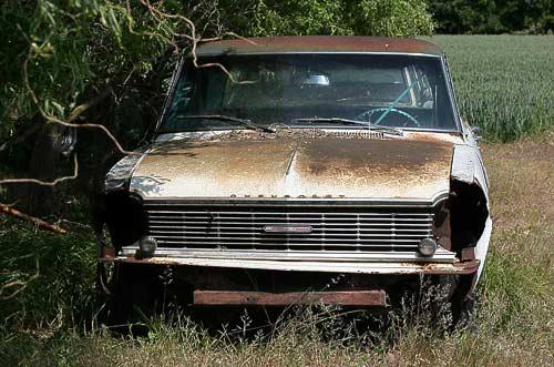 Chevy II / Nova - gefunden auf der Insel Falster in Dänemark